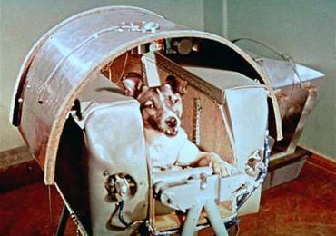สุนัขตัวแรกบนอวกาศ