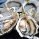 ทำไมหอยนางรมถึงเป็นอาหารเจ?