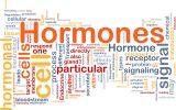 ฮอร์โมนคือ (Hormone)