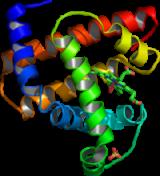 สารชีวโมเลกุล (biomolecule)